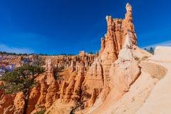 Bryce Canyon Utah Winter Landscape Stockbild