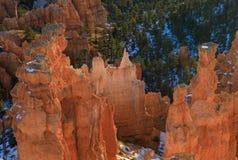 Bryce Canyon Utah Winter Landscape fotografie stock libere da diritti