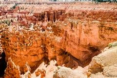Bryce Canyon View royaltyfri foto
