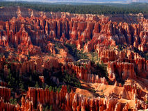 Bryce Canyon Views Royalty Free Stock Images