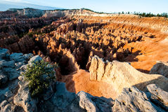 Bryce Canyon Wide Angle of Main Amphitheater Stock Image