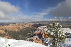 Bryce Canyon in winter stock photography