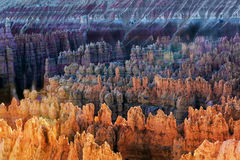 Bryce Canyon in winter Royalty Free Stock Image