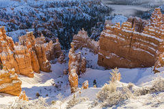 Bryce Canyon Winter Wonderland photographie stock