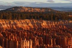 bryce canyon wschód słońca obrazy royalty free