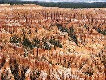 Bryce Canyon1 Royalty Free Stock Image