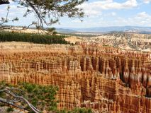 bryce canyon3 Obrazy Stock