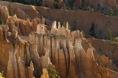 Bryce cayon glows in the early morning light. Bryce canyon national park iconic hoodoos colors light up in early morning sun Stock Images