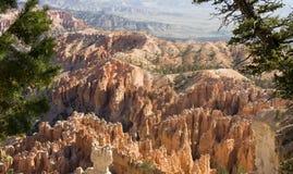 Bryce Conyon National Park Royalty Free Stock Photo