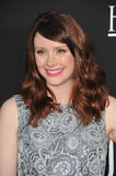 bryce dallas howard Royaltyfri Foto