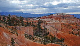bryce falez park narodowy Obrazy Stock