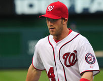 Bryce Harper, Washington Nationals Royalty Free Stock Photos