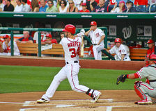 Bryce Harper Washington Nationals Royalty-vrije Stock Foto