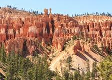 Bryce Hoodoo Ridgeline. A ridge of hundreds of hoodoos just below the clifftops of Bryce Canyon National Park, Utah Royalty Free Stock Images