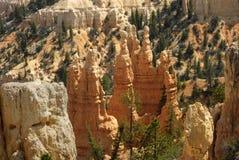 Bryce Hoodoos. Landscape image of sandstone rock spires (hoodoos) in Bryce Canyon National Park, Utah Royalty Free Stock Image
