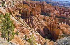 bryce jar parkowy Utah Zdjęcia Stock