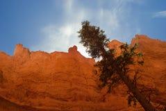 bryce jaru formacj skała Obrazy Royalty Free