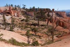 bryce jaru krajobraz Fotografia Royalty Free