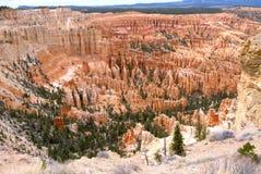 Bryce kanjon Royaltyfria Foton