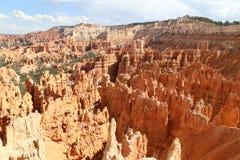 Bryce kanjon Arkivbilder