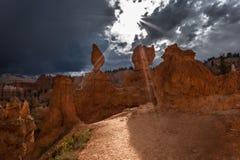 Bryce kanjon Royaltyfria Bilder