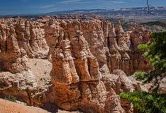 Bryce kanjon Arkivfoton