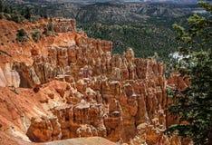 Bryce kanjon Arkivbild