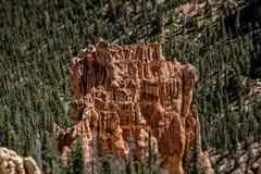 Bryce kanjon Royaltyfri Fotografi
