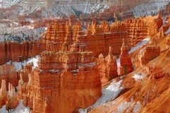 Bryce kanjon VII arkivbilder