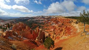 Bryce kanjon VIII royaltyfri fotografi