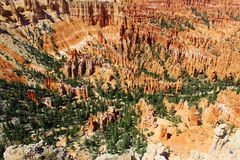 Bryce kanjonnationalpark Arkivfoton