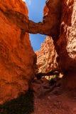 Bryce kanjonnationalpark Arkivfoto