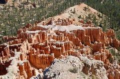 Bryce kanjonnationalpark utah royaltyfria foton