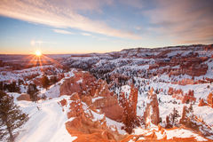 Bryce kanjonnationalpark, Utah Arkivfoton
