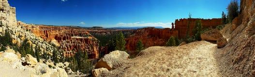 Bryce kanjonnationalpark, Utah, USA fotografering för bildbyråer
