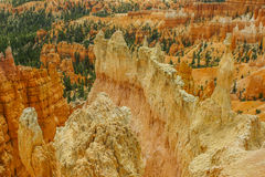 Bryce landscape Stock Images