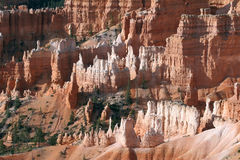 Bryce National Park Stock Images