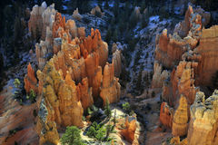 Bryce National Park Radiant Rocks & Hoodoos. Radiant morning sunlight sets the sculpted red rocks and hoodoos on fire with a glowing light Stock Photo