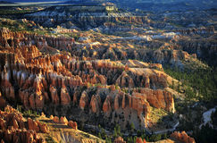 Bryce National Park Radiant Rocks & Hoodoos. Radiant morning sunlight sets the sculpted red rocks and hoodoos on fire with a glowing light Royalty Free Stock Photos