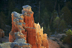 Bryce National Park Radiant Rocks & Hoodoos. Radiant sunlight sets the sculpted red rocks and hoodoos on fire with a glowing light Royalty Free Stock Images