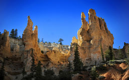 Bryce National Park Radiant Rocks & Hoodoos. Radiant sunlight sets the sculpted red rocks and hoodoos on fire with a glowing light Royalty Free Stock Image