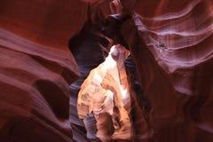 Bryce Nationalpark Stockbilder