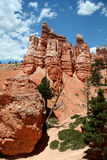Bryce Path. Bryce Canyon National Park stock photo