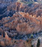 Bryce Point, Bryce Canyon. Image captured from Bryce Point at Bryce Canyon National Park, Utah of hoodoos in early morning sunlight Royalty Free Stock Image