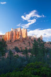 Bryce rock formations in late sunshine Stock Photography