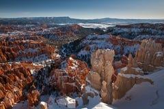 Bryce Schlucht im Schnee stockfotografie