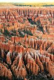 Bryce Schlucht-Nationalpark Stockbild