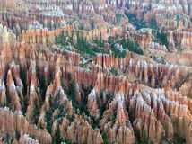 Landschaft des Bryce Schlucht-Nationalparks, Utah, USA stockbild