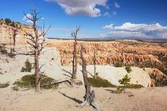 Bryce Schlucht, Utah Lizenzfreies Stockfoto