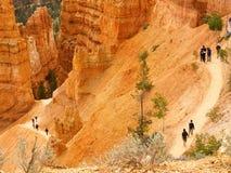 Bryce Schluchtspur mit Wanderern Stockfotos